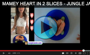 [screenshot of Mamey Heart in two slices video with Jungle Janie - click to play]