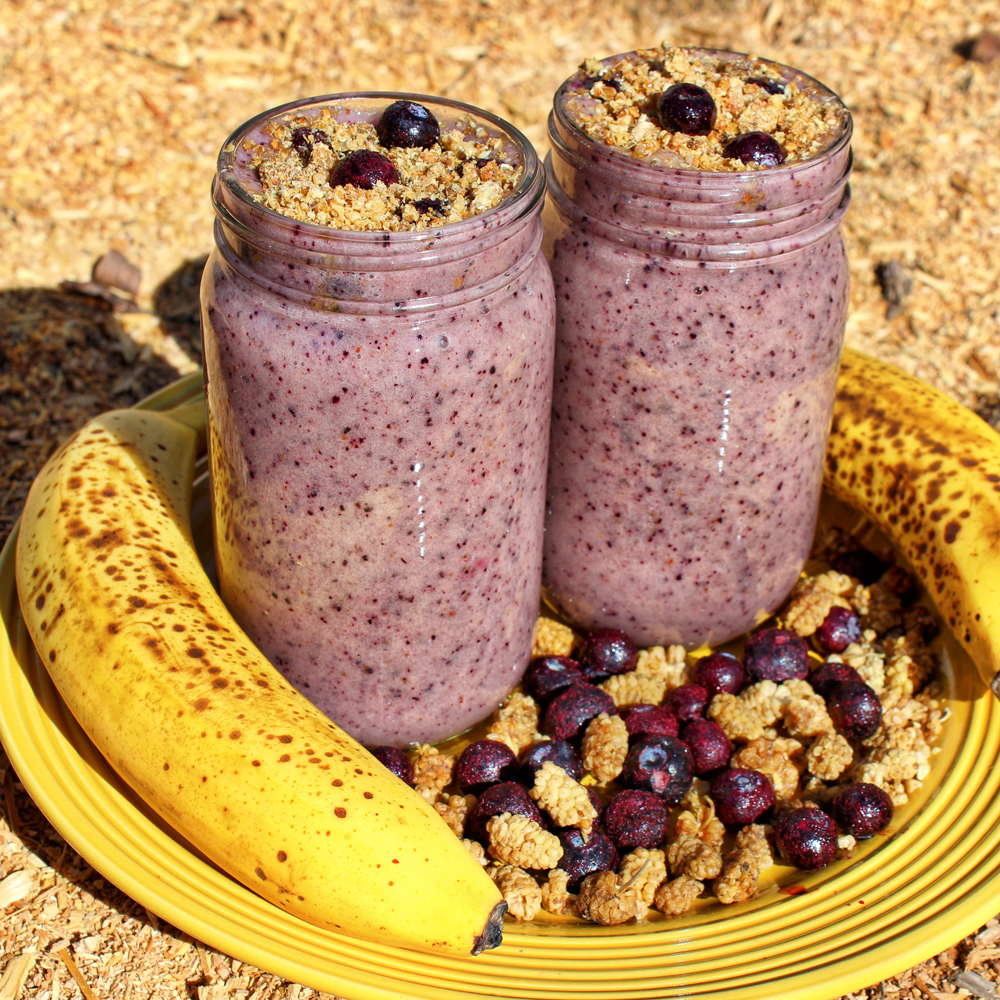 mulberry food  Blueberry Banana Smoothie Mulberry Crunch | Home of The 80/10/10 ...